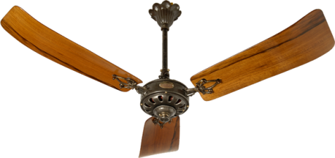 This month's ceiling fans